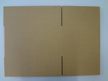 10Lジョウロ2個入みかん箱形状.jpg