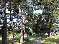 和田公園.jpg