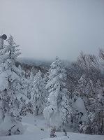 たかつえスキー場2012.jpg