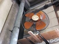 ダンボール工場の扇風機.jpg