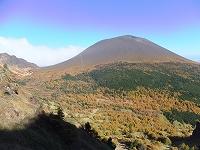 浅間山の黄葉.jpg