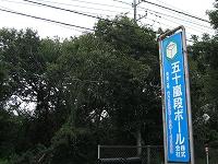 s-土曜日曇り.jpg