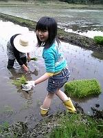 s-田植え2011.05.03.jpg