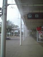 s-霧2011.07.13.jpg