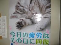 s-2012ポスター.jpg
