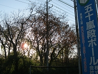 s-2012裸の木.jpg