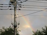 美浦村の虹
