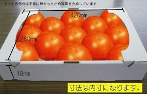 トマト箱の4kg用ダンボールをご紹介します。